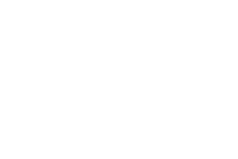 Wedding Day Bliss