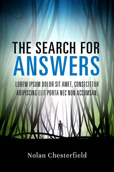 TheSearchForAnswers